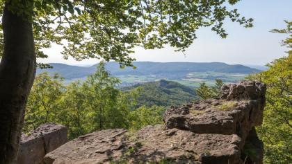 Aussicht vom Thüster Berg