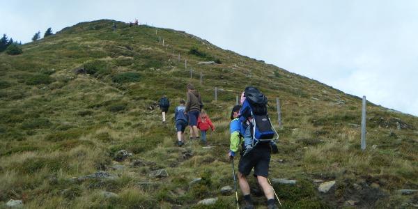 Aufstieg auf den Hochpalfennock - Biosphärenpark Nockberge