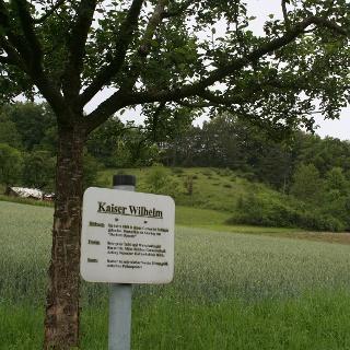 Obstbaumlehrpfad Wachbachtal