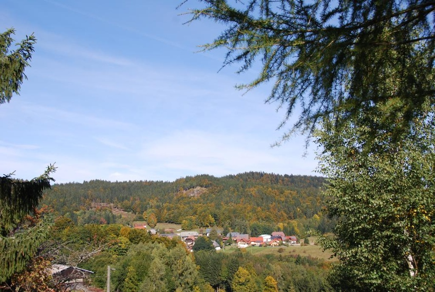 Dachsberg: Nordic-Walking Weidberg-Runde