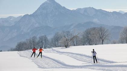 Ski-Langlauf in Weißensee mit Panoramablick auf den Säuling