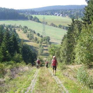 Plattenweg zwischen Grumbach und Brennersgrün