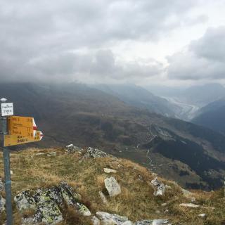 Aletschgletscher im Hintergrund.
