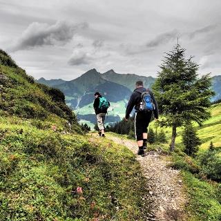 Wanderweg von der Alpe Oberpartnom zur Alpe Steris