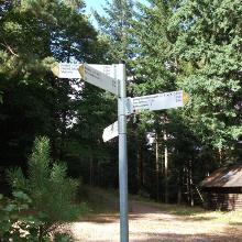 Wegekreuzung an der Schutzhütte