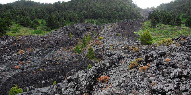 Auf dem Weg zum Vulkan San Juan.