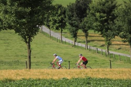 Bike Arena Sauerland - Westliches Waldeck