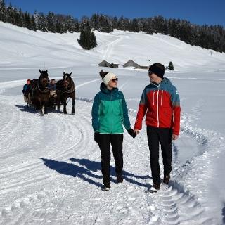 Winterwandern am Hochhäderich