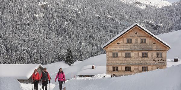 Winterwandern in Schönenbach