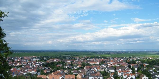Von der Ruine Wachtenburg schweift der Blick über das Städtchen Wachenheim.