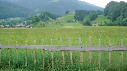 Bizau zwischen Dorf und Moos