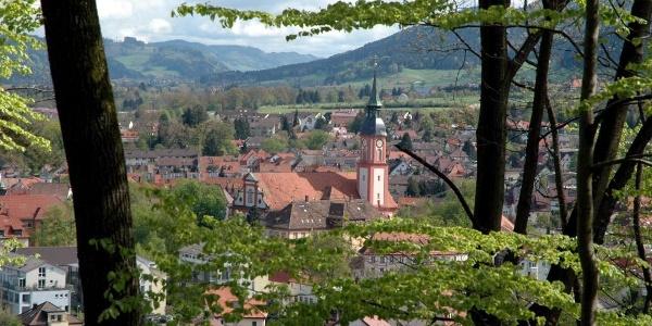 Blick auf Waldkirch