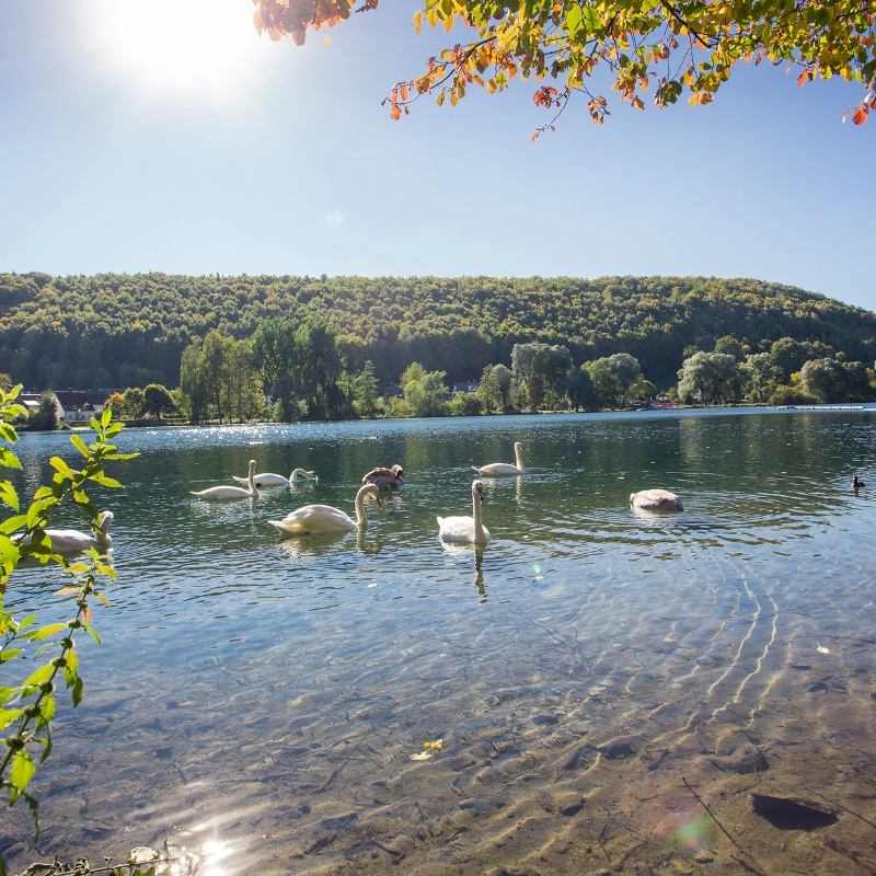 Itzelberger See
