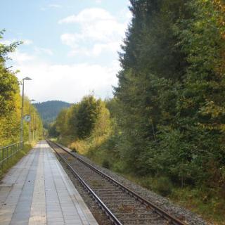 Start Waldbahn Ludwigsthal