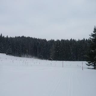 Winterlandschaft beim Schweinegger Weiher (