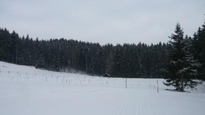 """Winterlandschaft beim Schweinegger Weiher (""""Schlossweiher"""") (2)"""
