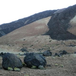 Die Teideeier