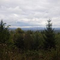 Blick nach Osten