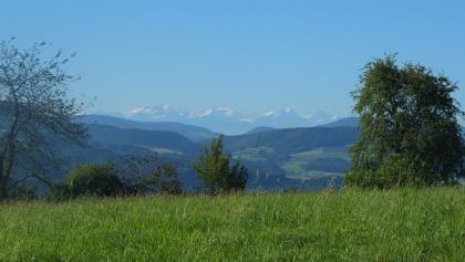 wunderschöne Alpensicht!! ganz rechts: Eiger,  Mönch und Jungfrau
