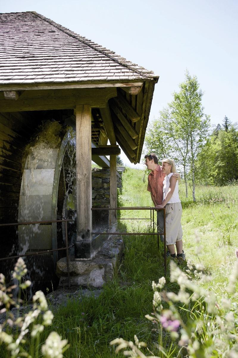 Heimatpfad Hochschwarzwald- Mühlen und Sägen in der Schlucht