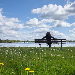 Natur genießen am Schwielochsee