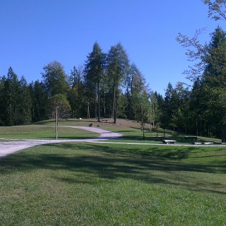 Ex vivaio forestale.