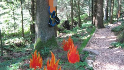 Einstieg Feuerwehrwegle Kniebis