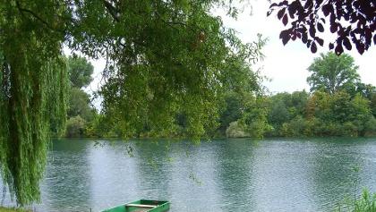 Ein Platz zum Träumen-die Rheinauen