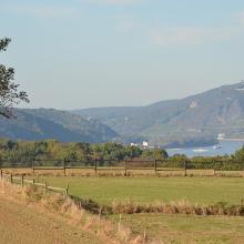 Blick vom Plateau nahe Kapellenhof rheinab Richtung Siebengebirge und Drachenfels