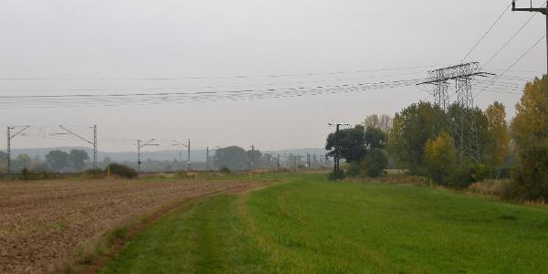 Feldweg von Neusörnewitz nach Zaschendorf