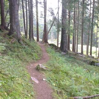 Zweiter Teil des Trails