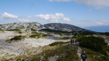 Karstlandschaft auf dem Gottesacker-Plateau