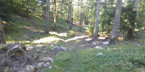 Trail dorsale Monte Corno.