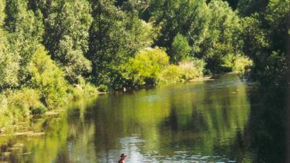 Floßfahrt auf der Saale bei Uhlstädt