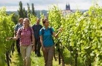 Foto Weinwanderweg in Meissen