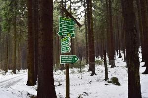 Foto Wanderwegweiser am Wachberg