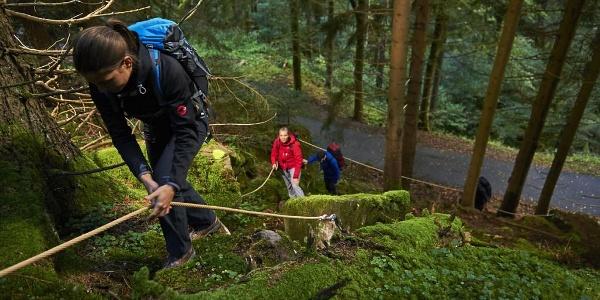 Albtal.Abenteuer.Track - Kletterpassage