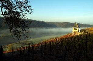 Foto Herbststimmung am Schwalbennest, Meißen