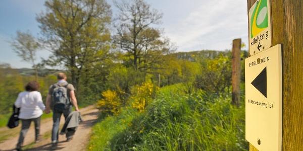 Wandern auf dem Eifelsteig bei Gemünd
