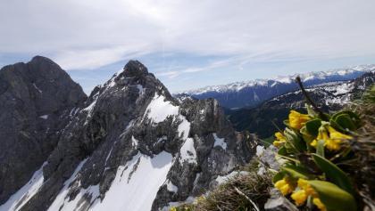 Blick vom Gipfel des Schartschrofen auf die Rote Flüh