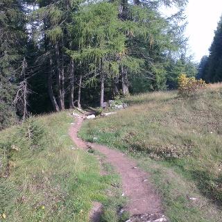 Inizio del Trail.