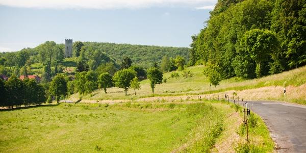 Weg zur Tautenburg