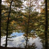 Hinterer Truchssenweiher Sonntag, 23. Oktober 2016, 11:05 Uhr