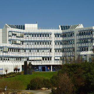 D-Gebäude Universität Trier