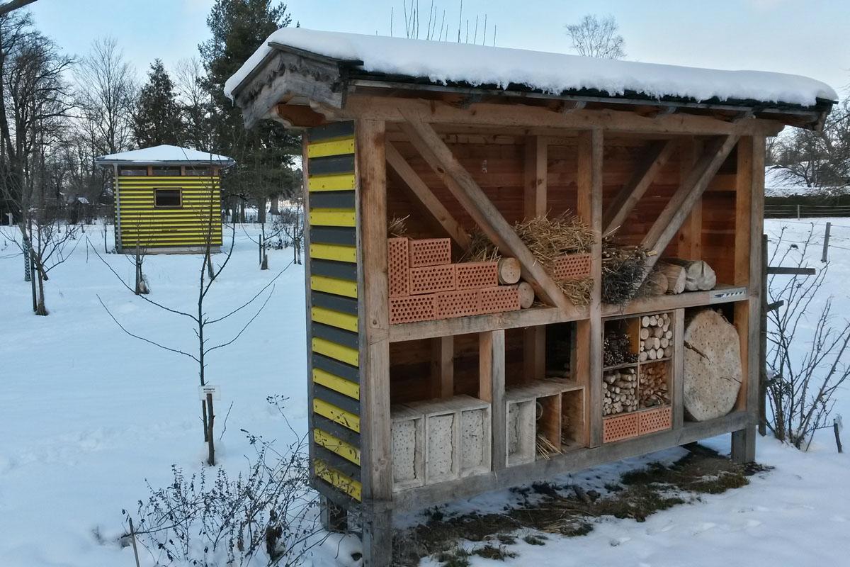 Schaubienenhaus im Winter