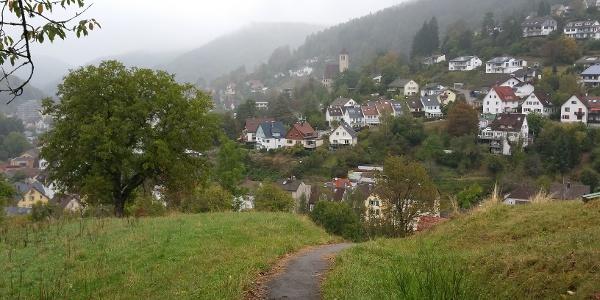 Blick auf Schramberg