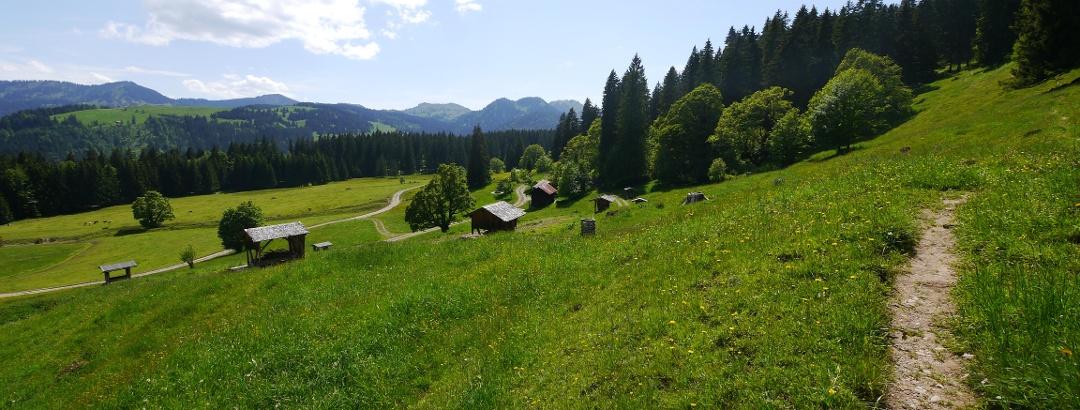 Weg zum Steineberg