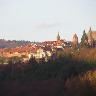 Blick zum Dilsberg