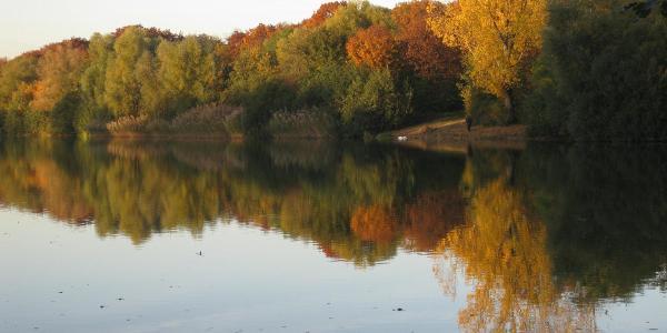 Am Reuschenberger See