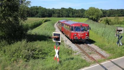 Der Rote Flitzer in der Bernau